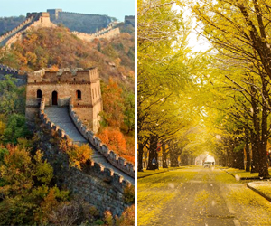 Win two tickets to Japan or China with Cathay Pacific